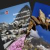 Fotowettbewerb: Titelbild Tourenprogramm 2017