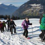 OG Schattdorf Schneeschuhtour Haldi 11.2.2017